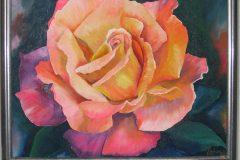 oelmalerei_rose_orange_gelb